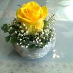 Květinářství Srdíčko – Milevsko